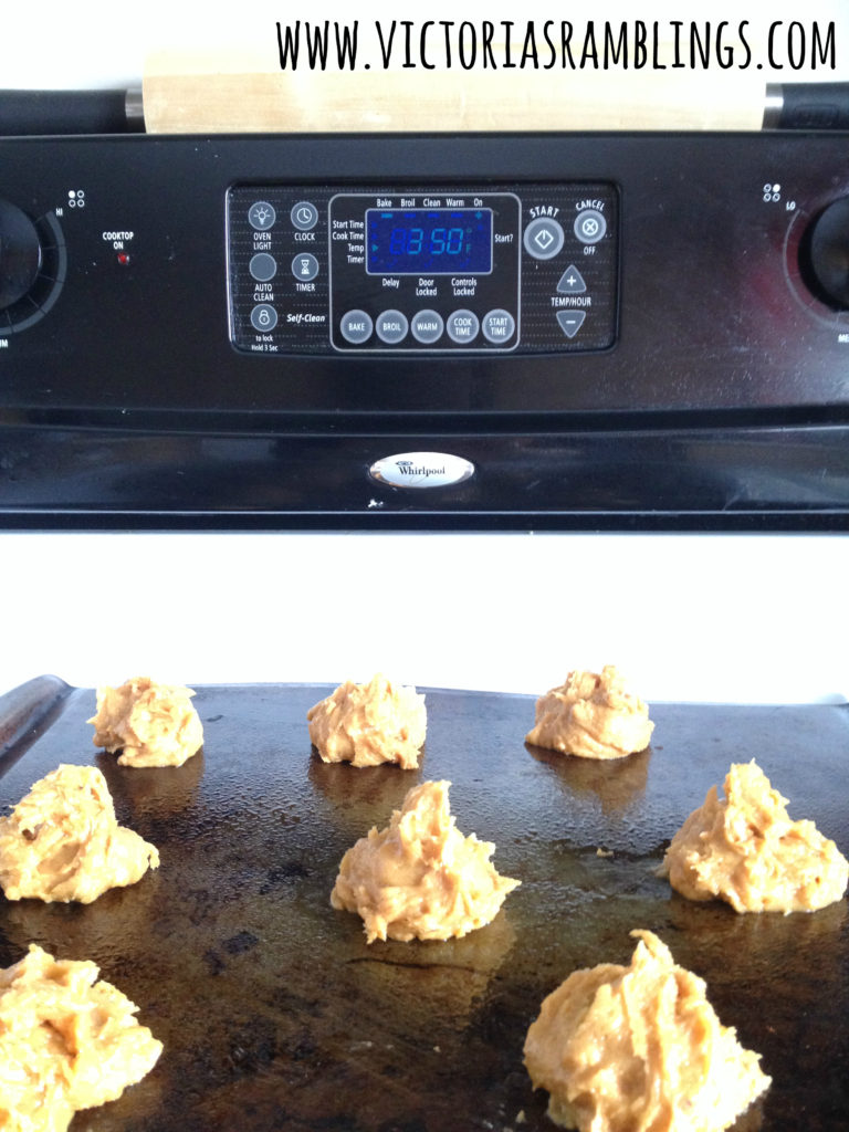 crazy easy peanut butter cookies 5