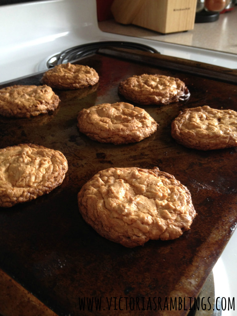crazy easy peanut butter cookies 7