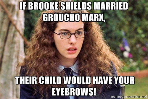 princess-diaries-eyebrows